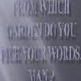IBRAHIM DWIDAR